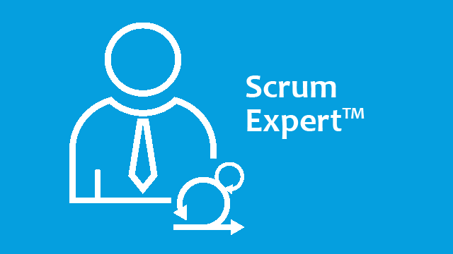 SCRUM - Scrum Master TEST (Online/Self-Study Case Study)